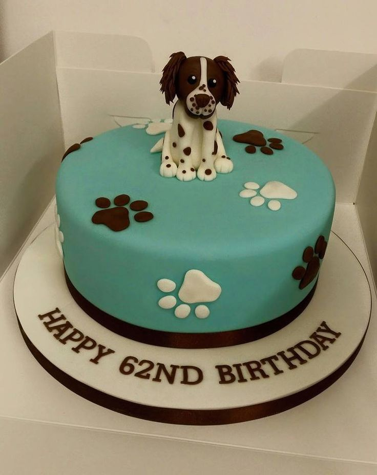 Make Pupcakes For Your Dog Blue Cross