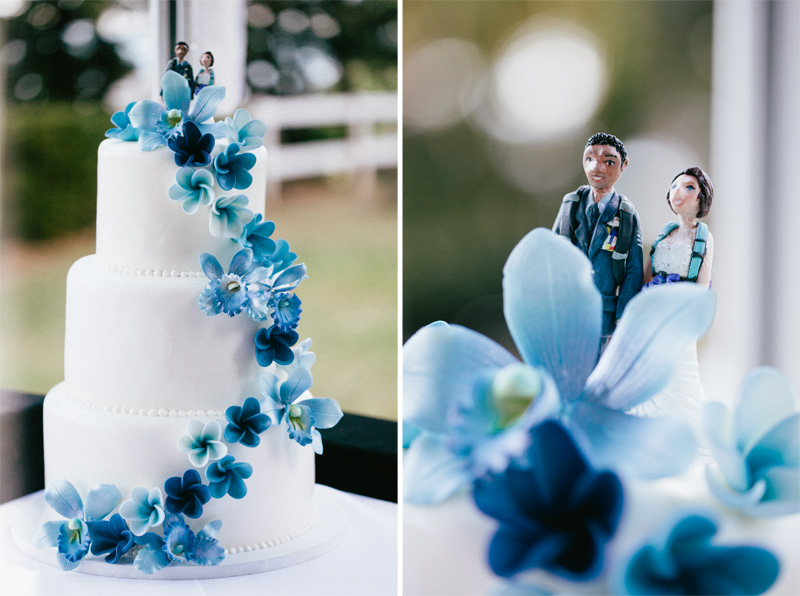 Hawaiian Wedding Cakes