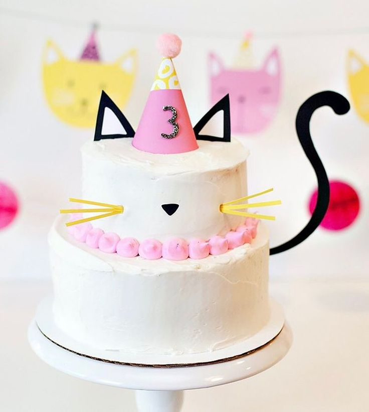 Kitten Birthday Cakes