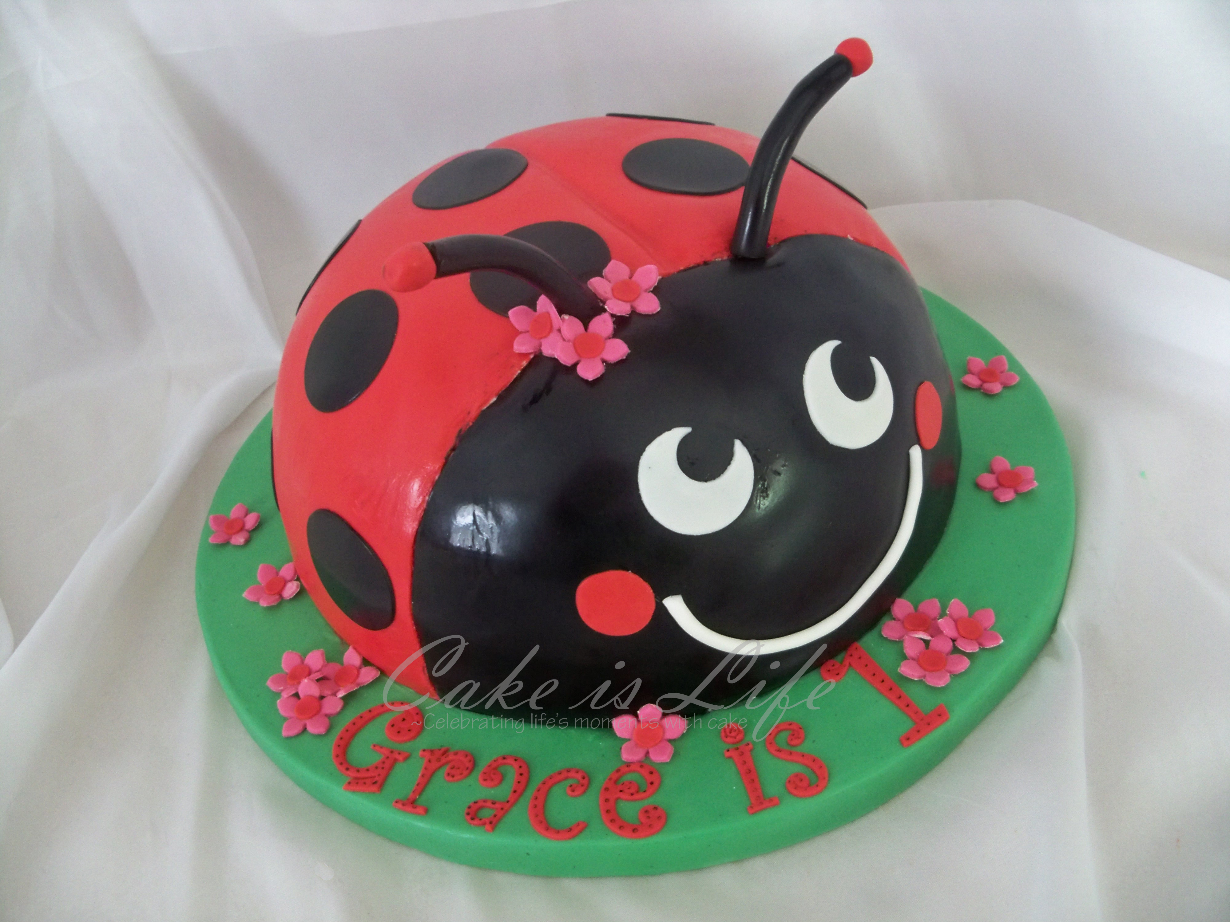 Ladybird Birthday Cakes