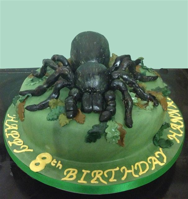 Spider Birthday Cakes