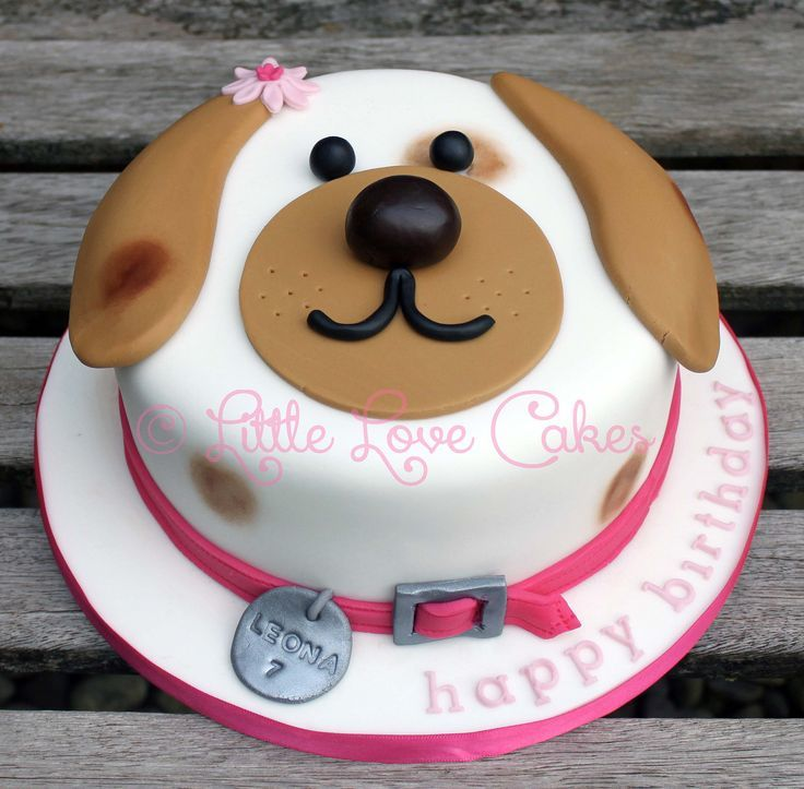 Stylish Dog Birthday Cakes Photo G Ery